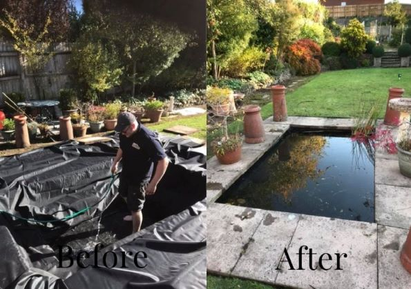 Pond before and after