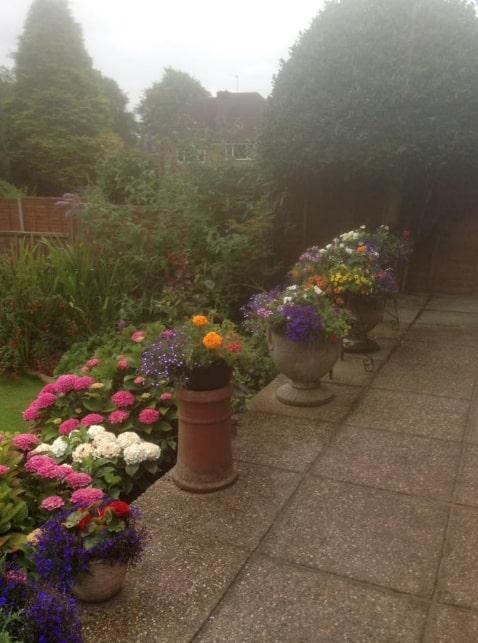 Various garden planters