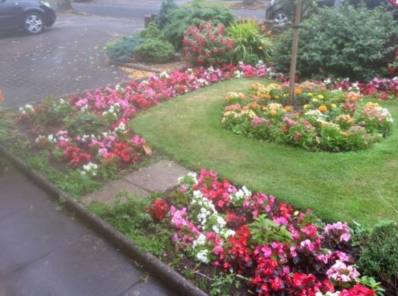 mixed flowerbeds