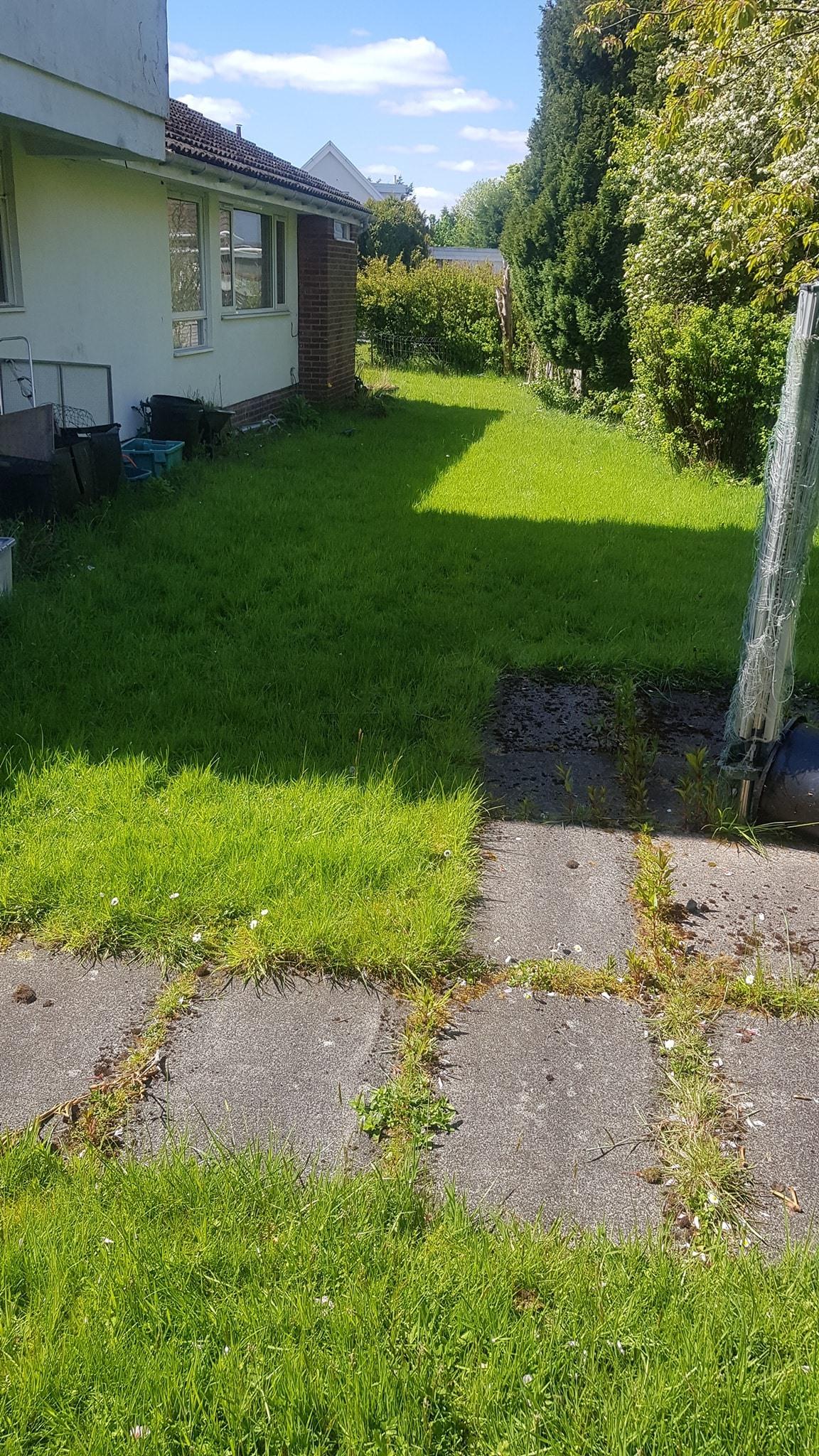 grass cutting